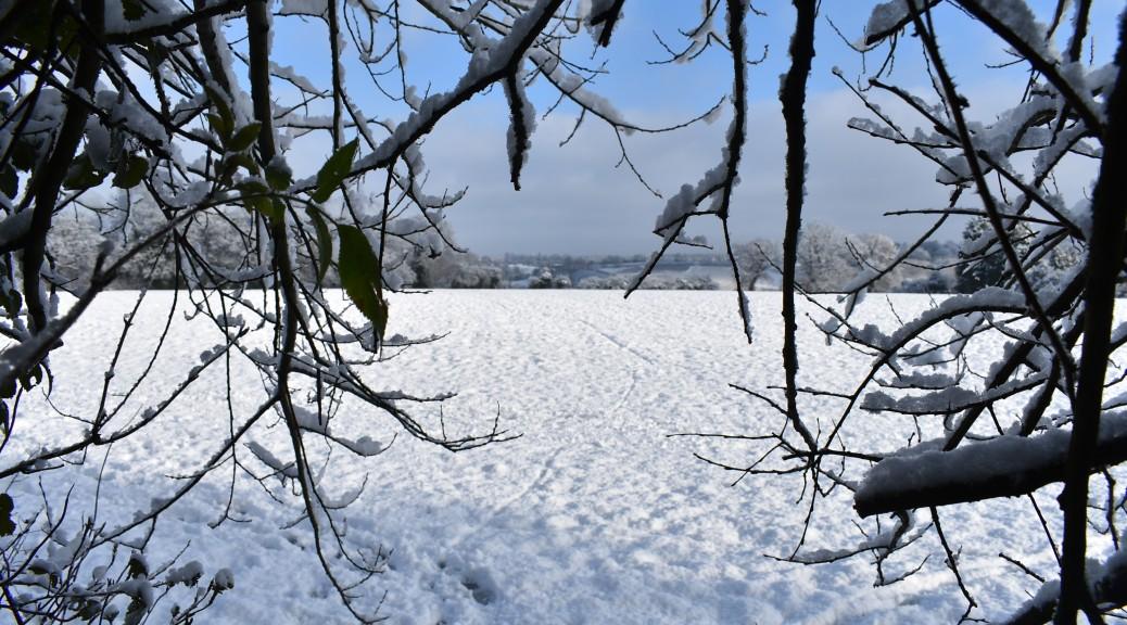 A snowy scene in Swansea Wales