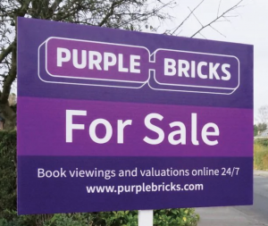 chief executive and founder Michael Bruce stepped down and Purplebricks scaled back its international operations.